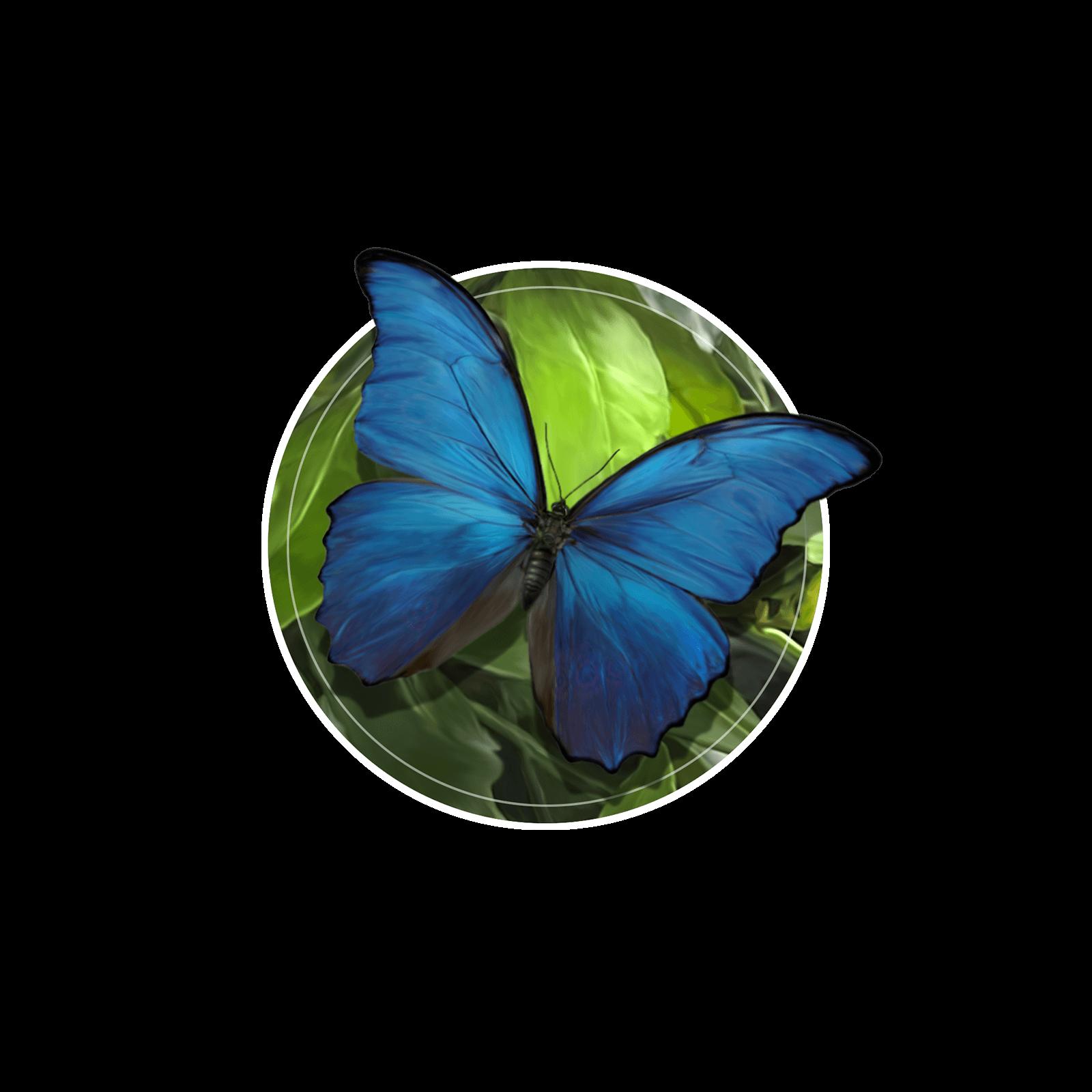 Ilustração de uma borboleta azul iridescente no tronco de uma árvore