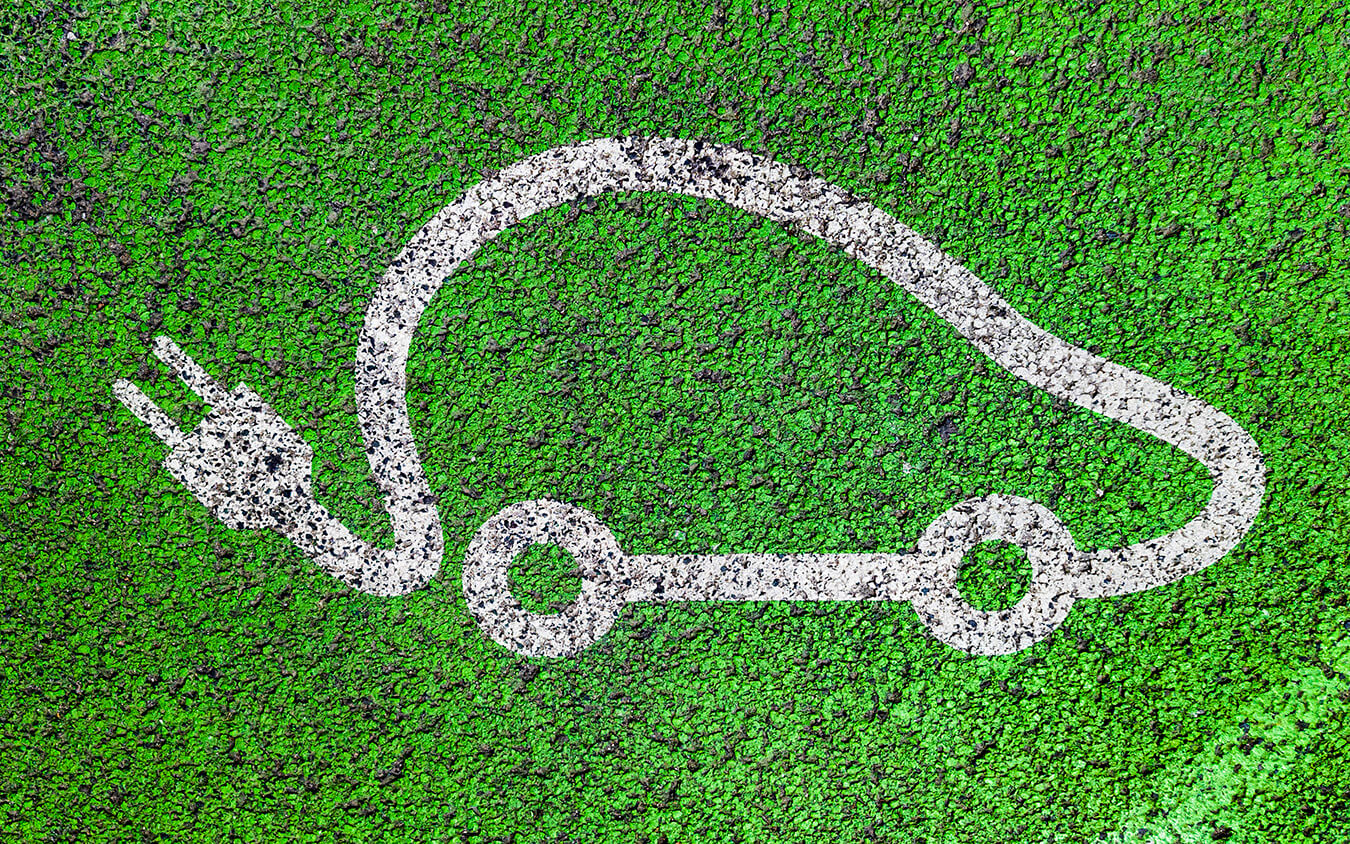 car outline painted on grass