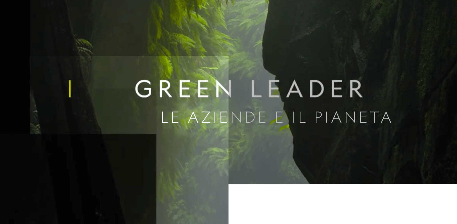 Guarda il trailer de Green Leader