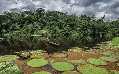 Foto de ribeirinho em canoa de madeira navegando sobre uma floresta alagada